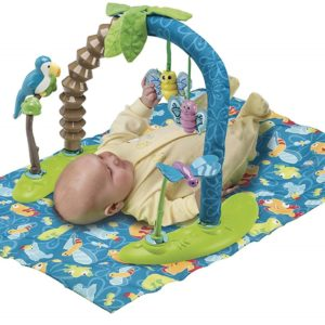 Evenflo-Exersaucer-Triple-Fun-Active-Center-2
